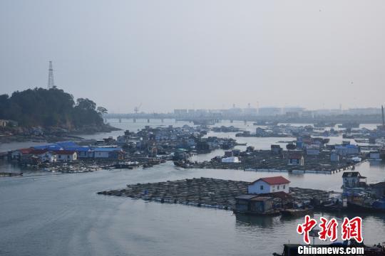 碳九泄漏事件發生後,肖厝碼頭顯得冷清。陳龍山 攝
