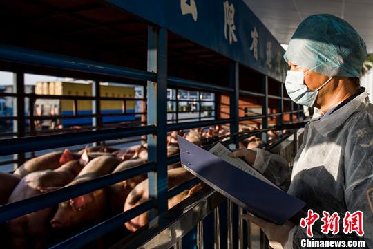 http://www.zgmaimai.cn/jiaotongyunshu/146051.html