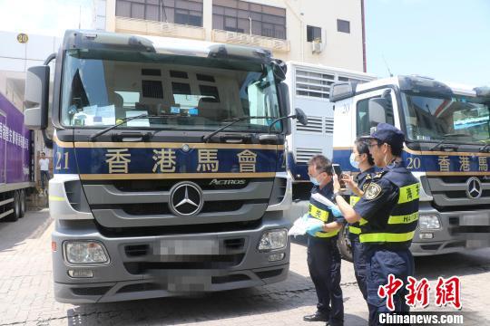 24匹香港赛马会赛马经深圳皇岗口岸入境