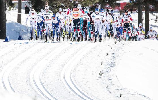 北京越野滑雪鸟巢站明天开赛 雪道赛后不会立即清除