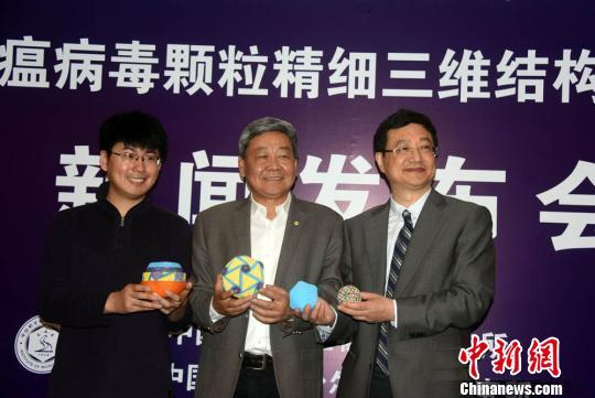 饶子和(中)、王祥喜(左)、步志高在发布会上展示非洲猪瘟病毒研究相关模型。孙自法 摄