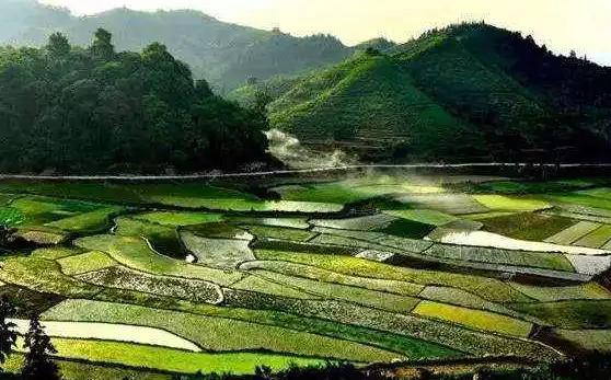 习近平:说一千道一万 增加农民收入是关键
