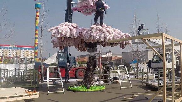 乐高樱花树打破吉尼斯纪录geek赏樱的正确姿势