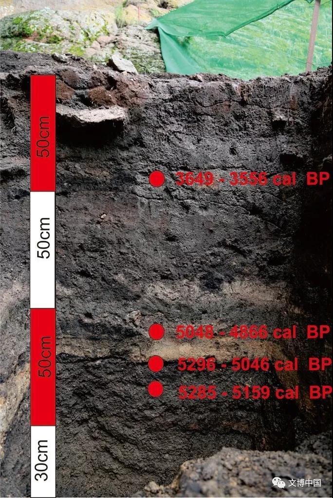 新疆吉木乃通天洞遗址获2017年度全国十大考古新