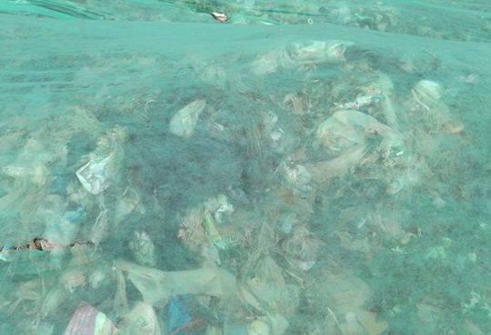 图5:三善堂临时垃圾堆场绿化膜下的垃圾清晰可见。