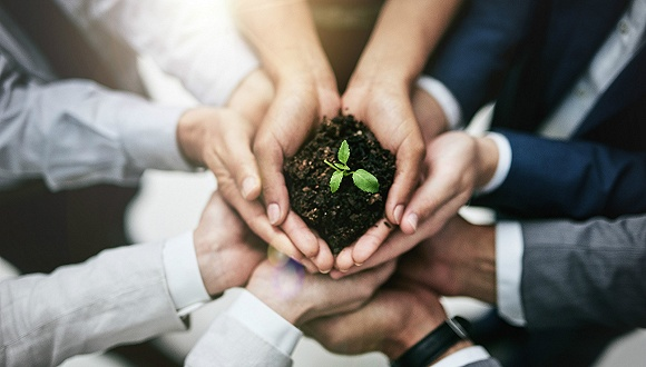 「财神国际官方网站」万联证券消费行业2020年度策略:建议从三个角度选择细分行业