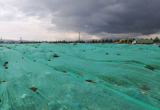 图4:三善堂临时生活垃圾堆场崭新的绿色覆膜