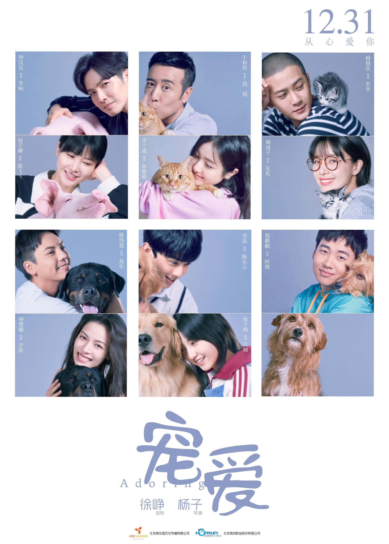 【宝宝计划】苦动物演员全是戏宝宝计划骨猫咪在图片