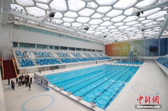 """""""2019国际泳联世界跳水系列赛北京站"""