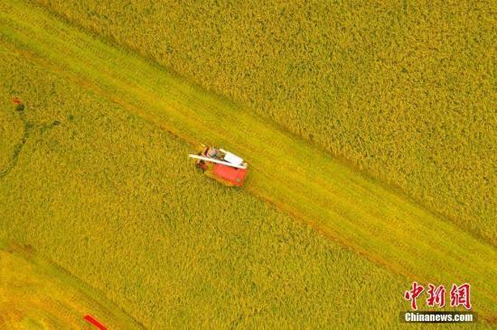韩长赋:中国有望连续五年实现粮食产量超1.3万亿斤