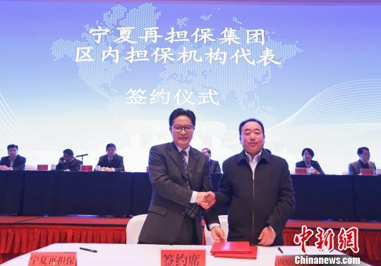 """更多金融资源将进入宁夏小微企业和""""三农""""领域"""
