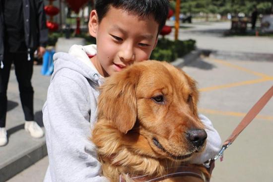 宝鸡全城热心人出动 帮男孩找到丢失狗狗