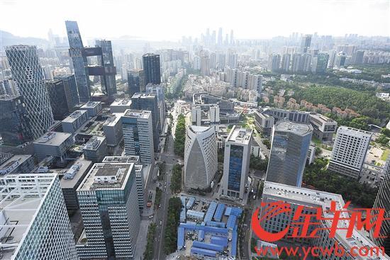 深圳科技园片区汇聚腾讯、大疆、百度、微软等国际科技企业 金羊网记者 王磊 摄