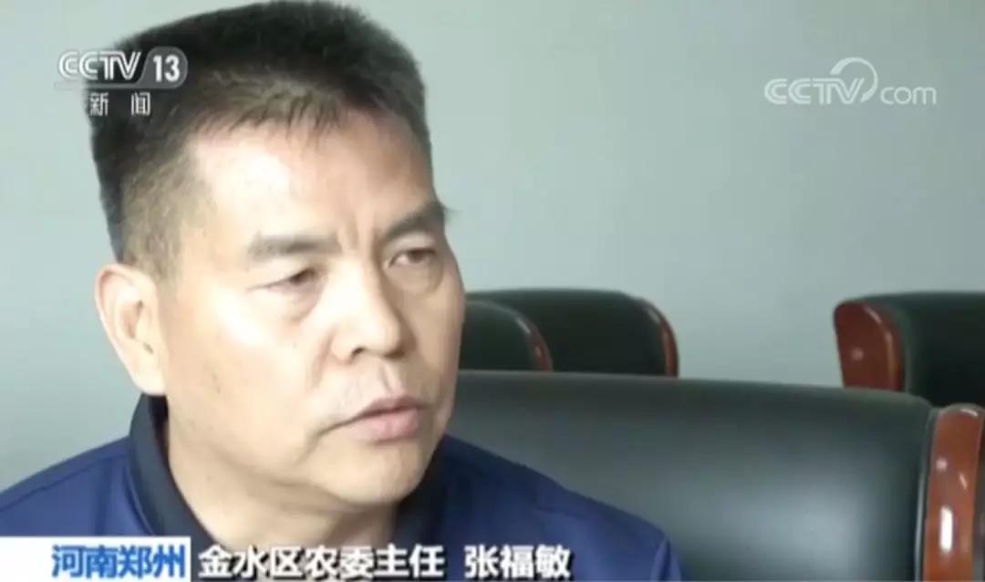 河南郑州金水区农委主任 张福敏