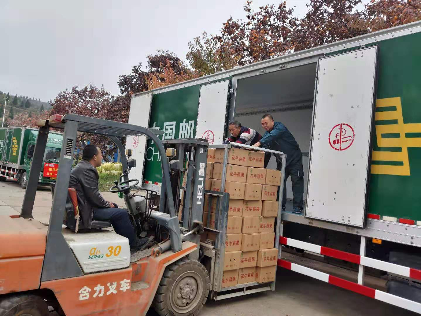 两天帮销苹果64万斤!这只是中国