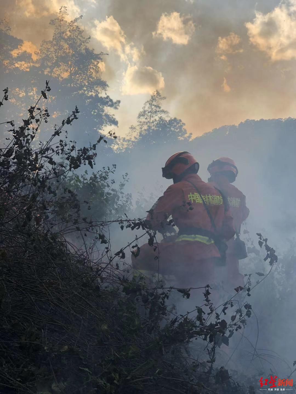 投入195人清理烟点,防止四川冕宁森林火灾复燃