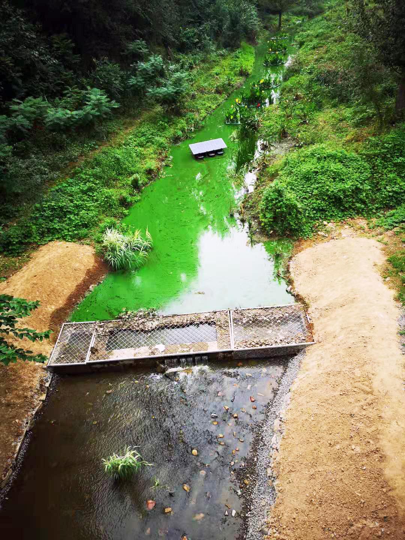 果各庄桥东知名河管理中的状况。白杉近景供图