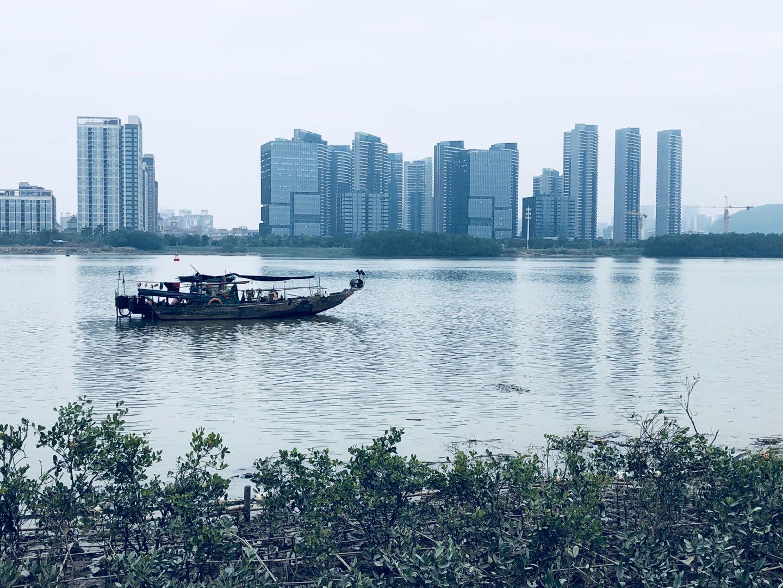 2019中国房地产企业品牌价值50强揭晓 多元化战略更加理性