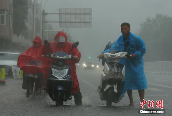 资料图:民众在雨中出行。中新社记者 杨可佳 摄