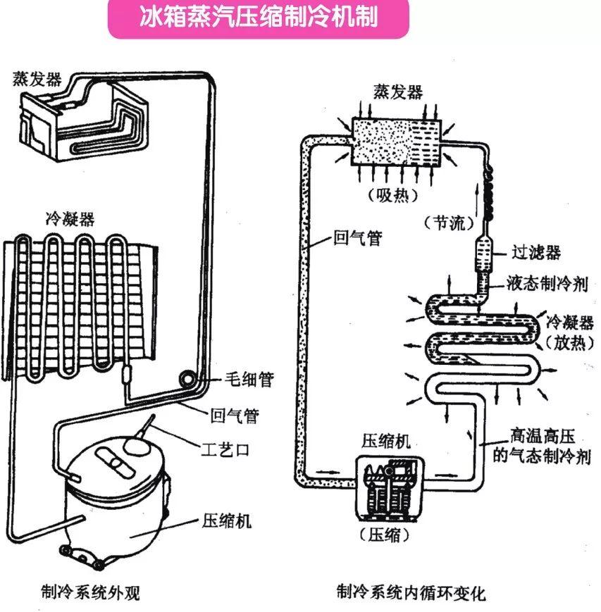 固体制冷剂, 冰箱新潮流