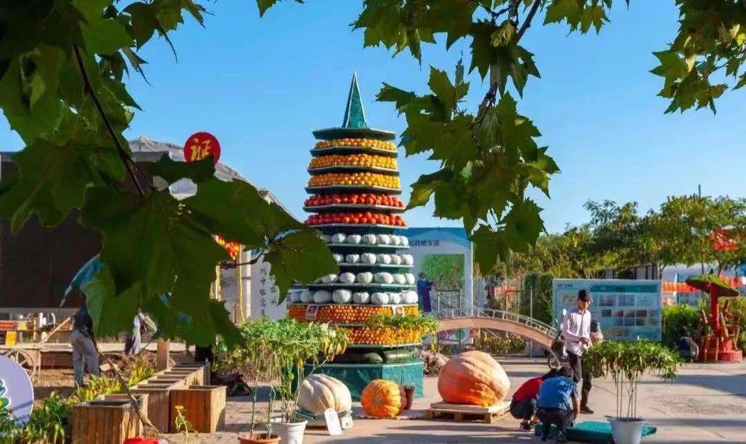 念君客游思断肠 北京郊区丰收活动国庆节期间持续进行