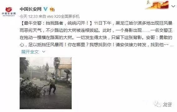 一米半树枝被刮断阻拦道路,哈尔滨交警暴雨中清障被点赞