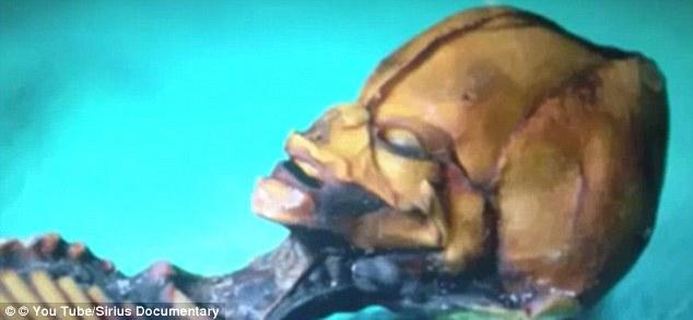 """这个拥有长形头骨的""""外星人""""身份之谜解开了"""