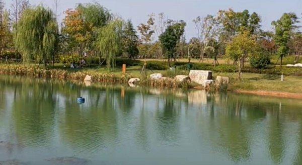 """周末阳光正好,长沙市民公园内享受""""日光浴"""""""