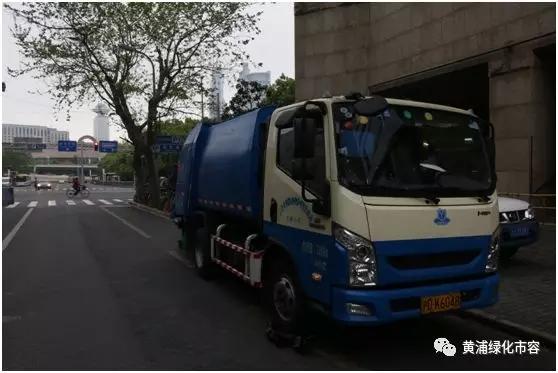 图片均来源于黄浦绿化市容微信公众号