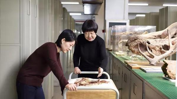 张弥曼介绍她的研究工作(摄于2018年)