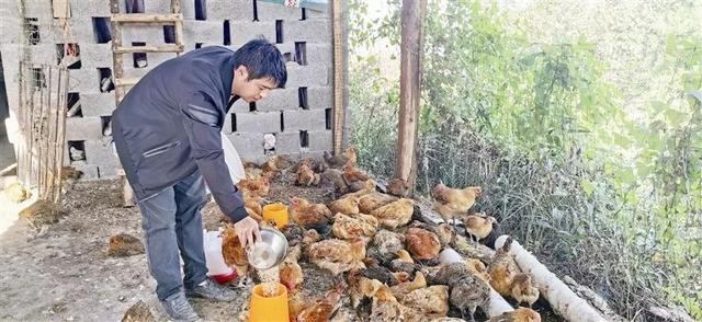 毕节!发展壮大养殖业,助力村民脱贫致富