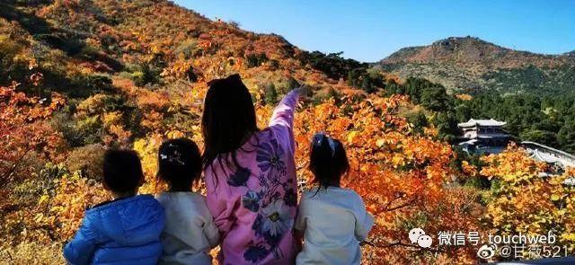 甘薇与贾跃亭传婚变后首发声:相信世界美好多过阴暗