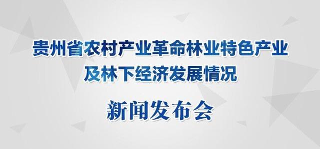 贵州省农村产业革命林业特色产业及林下经济发展情况新闻发布会
