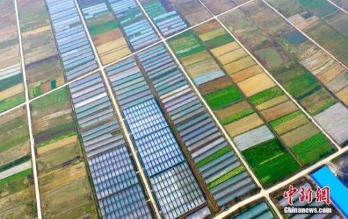 农业农村部:未来家庭农场以效益