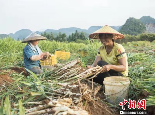 http://www.hunanpp.com/hunanxinwen/62364.html