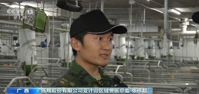 铂金娱乐网站,漳州龙文:马洲大桥4个主墩已全部出水