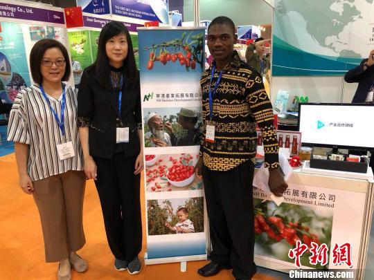 """宁夏枸杞亮相首届香港""""一带一路""""国际食品展"""