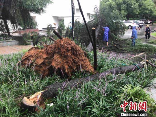 """台风""""安比""""22日登陆 浙江启动防台风Ⅳ级响应"""