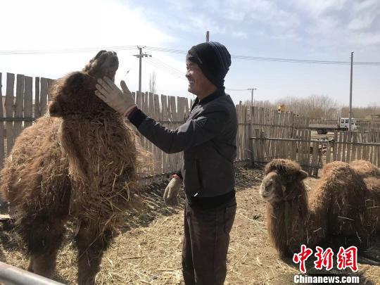 """内蒙古贫困户王喜和:改""""面貌""""换""""活法""""发"""