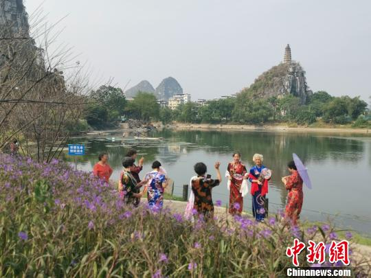 10月7日是一年一度的重阳节,正在桂林市脱猴子园内,前去赏花、摄影、舞蹈的白叟川流不息。 张超群 摄