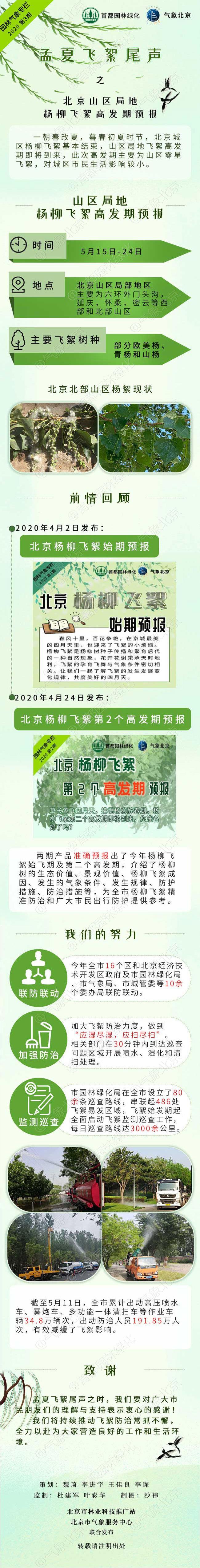 北京城区杨柳飞絮基本结束,山区15日进入高发期图片
