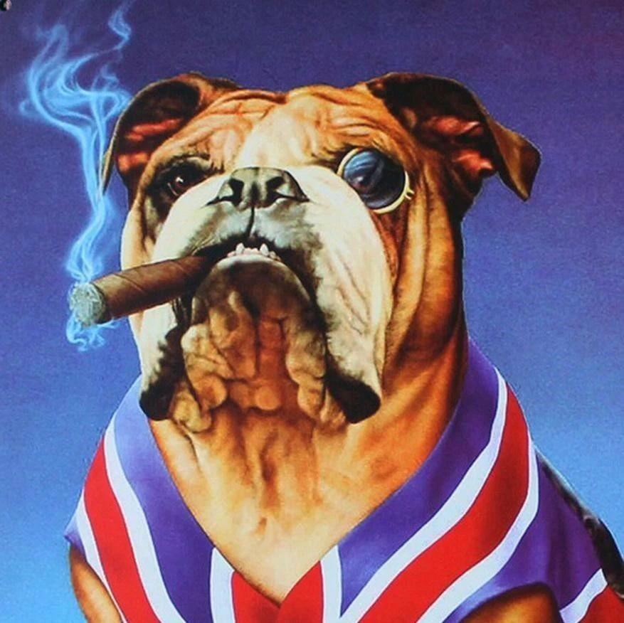 """""""汪星人""""能阻止英国脱欧吗?"""