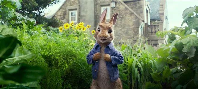 【票·资讯】《比得兔2》改档原主创集体回归 伍迪·艾伦:最糟糕的法国电影也比美国电影强!