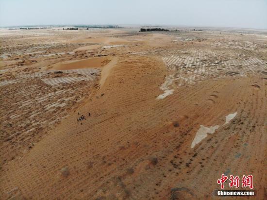 海内外专家学者齐聚新疆 探讨干旱区生态恢复与荒漠化