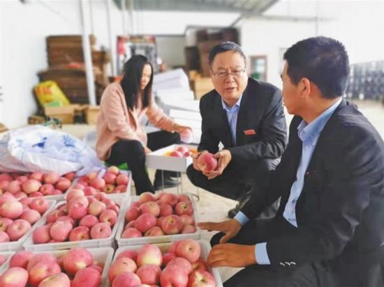 要为群众做实实在在的事――访铜川市宜君县委书记刘冲