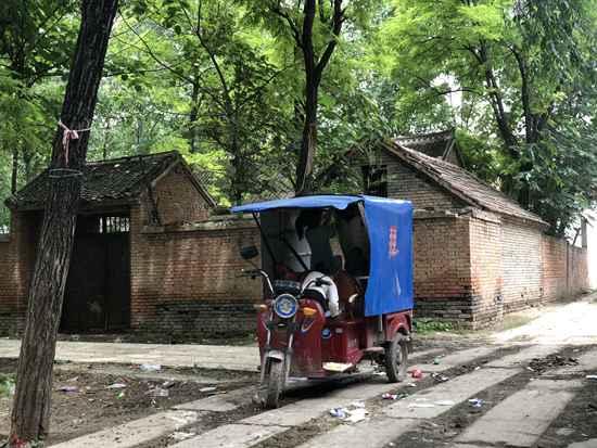 杨美芹的4个孩子在三轮车里玩耍