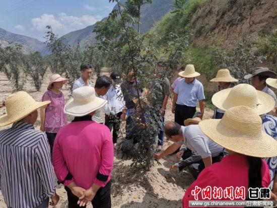 西北师大驻村帮扶工作队建沟通新平台送农技到村民手中