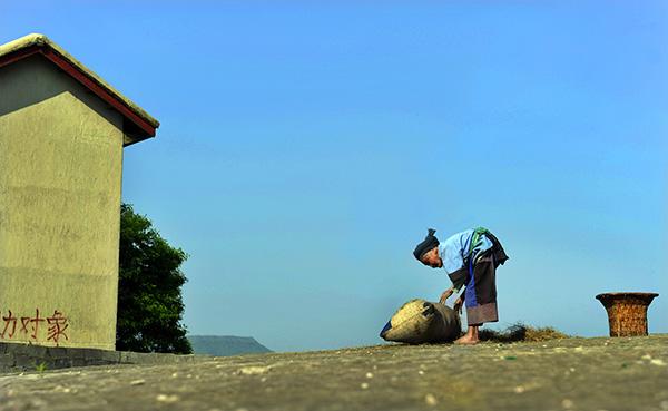 贵州省贵阳市花溪区高坡苗族乡云顶村的留守老人正在晾晒油菜籽。视觉中国 资料