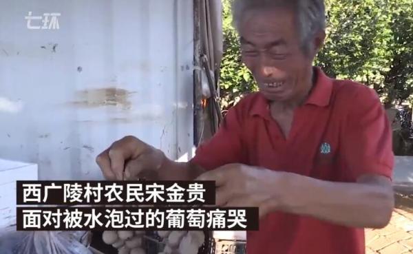 山东寿光水灾倒塌房屋9999间 巧合还是逃避追责?