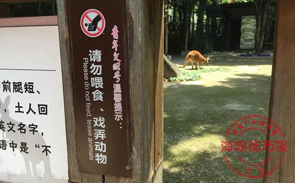 袋鼠活动区外的栏杆处,有明显的提示标志